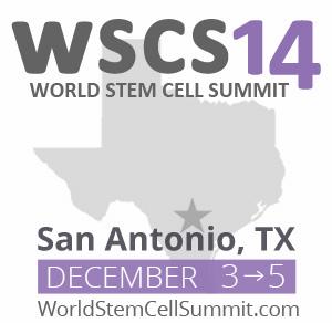 wscs-2013-announcementv3