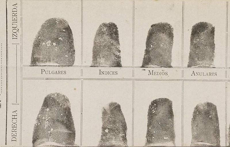 Francis Rojas' Inked Fingerprints. Juan Vucetich made the first criminal fingerprint identification (Rojas) in 1892. Public domain photo.