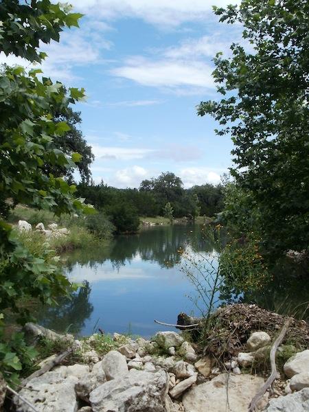 Easement property on Blanco Creek. Photo courtesy of the City of San Antonio.