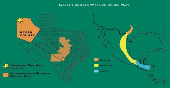 Golden-cheeked Warbler Range Map. Map Provided by Mitchell Lake Audubon Center.
