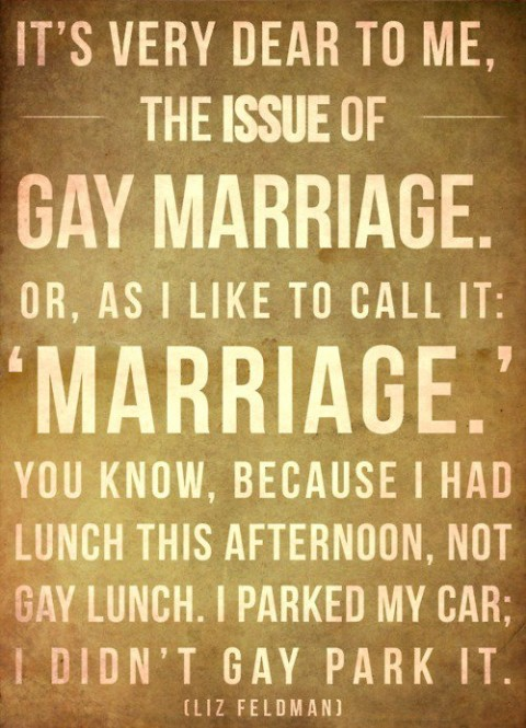 gay-marriage-liz-feldman