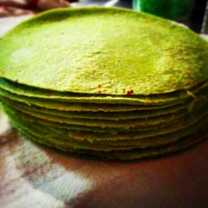 Tortillas made in-house by the Mixtli team.