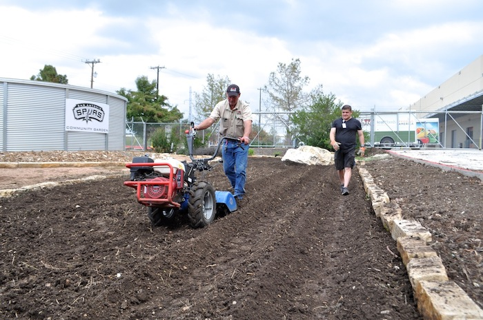 The Spurs Community Garden at the San Antonio Food bank is prepared for the next season's bounty. Photo by Iris Dimmick.