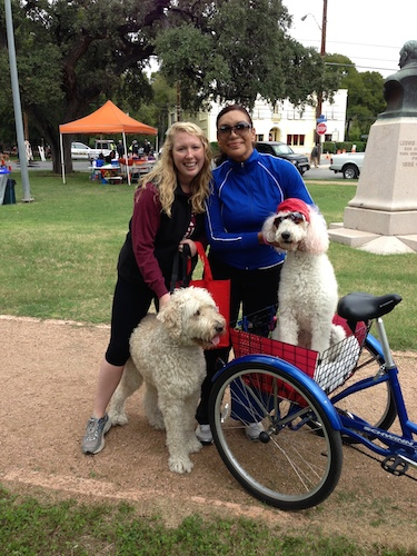 """Kelly Beevers hanging out with """"Downtown Poodle Lady"""" during Síclovía. Courtesy photo."""