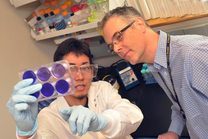 Dr. Robert Davey and Yasuteru Sakurai examine samples at Texas Biomedical Research Institute. Courtesy photo.