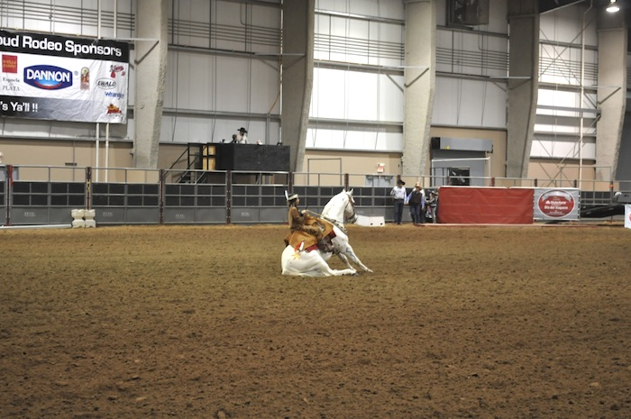 A Native American boy commands his horse to sit during the 2013 San Antonio Stock Show and Rodeo. Photo by Iris Dimmick.