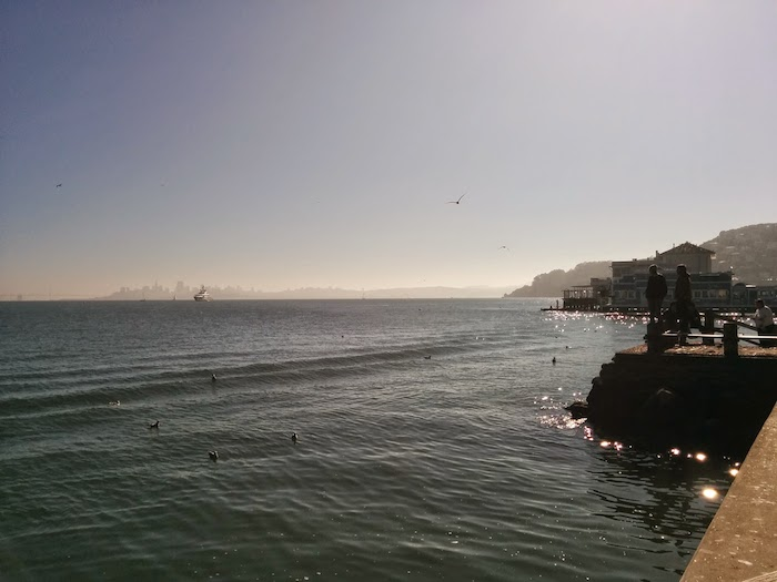 Looking out across the San Francisco Bay. Photo by Jeremy Wagner-Kaiser