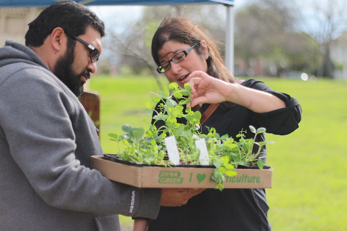 Jenny Garcia and Victor Zuniga inspect their recent purchase from the Urban Spice Farm booth. Photo by Joan Vinson.