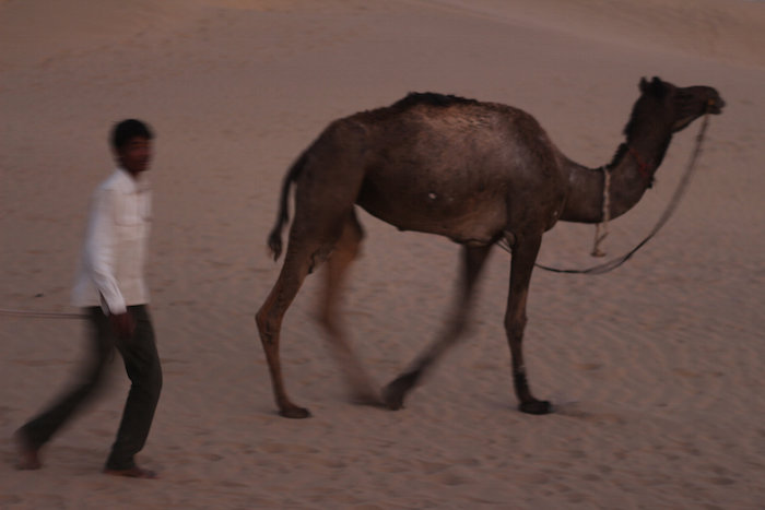 A camel and its guide in the Thar Desert. Photo by Joan Vinson.