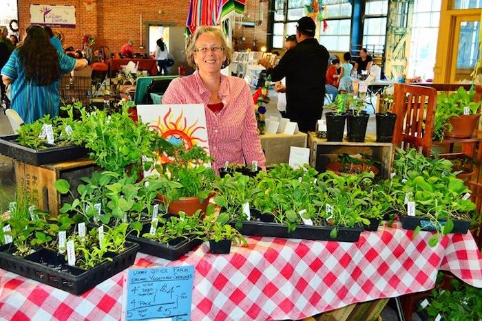 Karen Haynes offers Urban Spice Farm organic plants at the SoFlo Farmers' Market. Photo by Wei Huey.