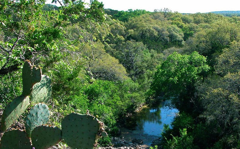 A vista in Government Canyon State Natural Area. Photo courtesy of Texas Parks and Wildlife Department.