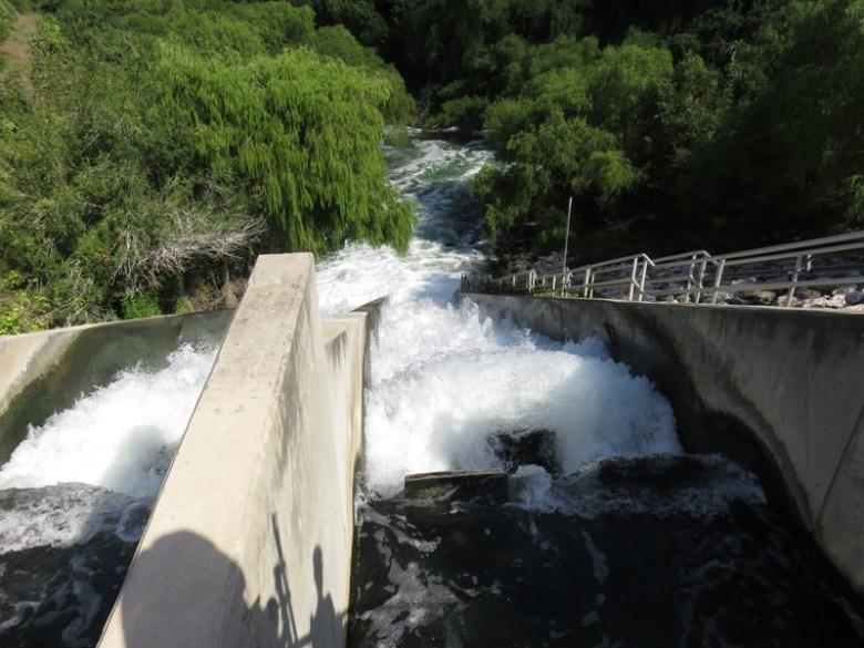 Discharge of clean water into Medina River. Photo by Warren Lieberman