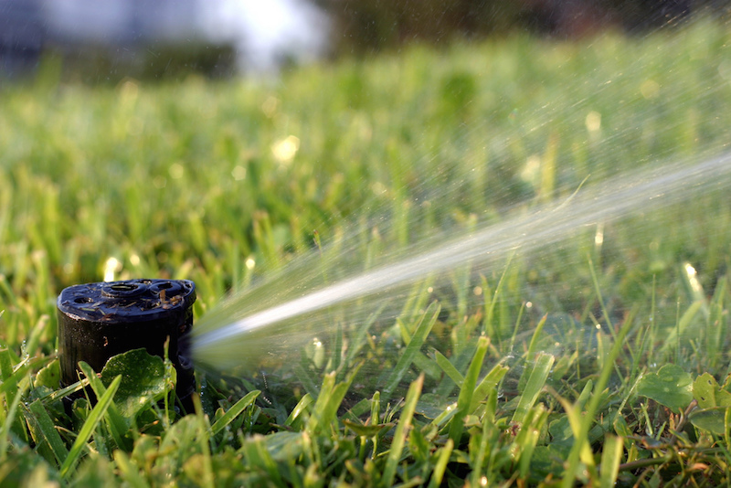 Water restrictions have been lifted following a surge of rainfall in September.