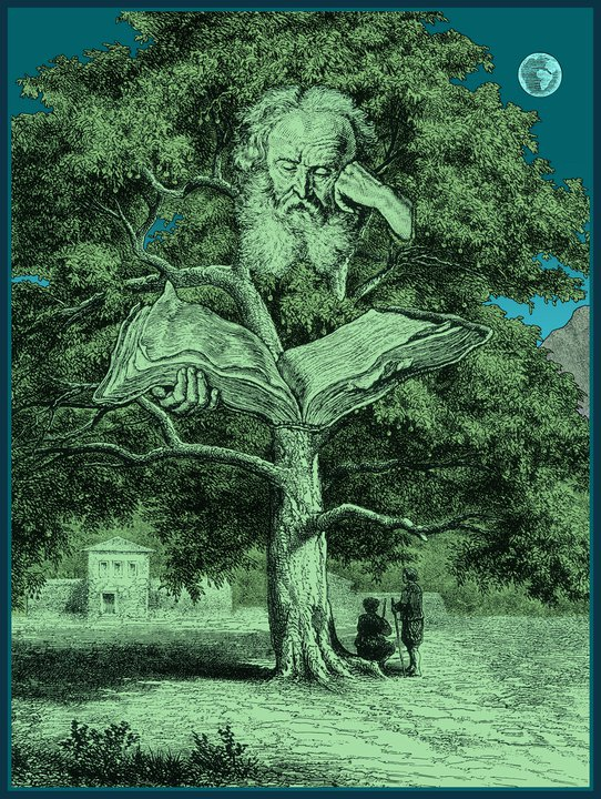 Poet Tree was created around 2011. Harter's legacy will live through his exceptional art. Image courtesy Jim Harter.