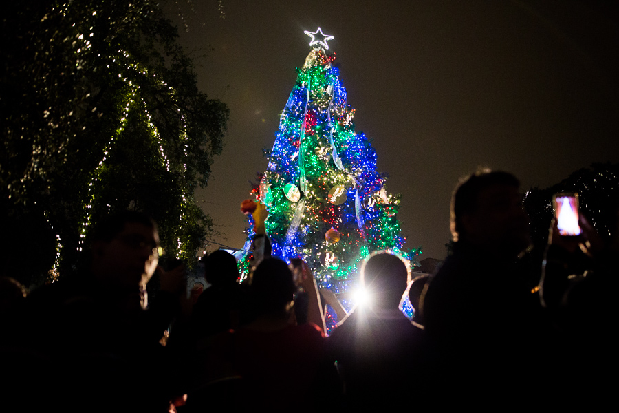 The crowd looks up as this year's tree is lit for the first time. Photo by Scott Ball.