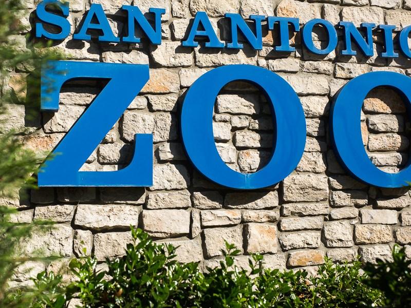 The San Antonio Zoo. Photo by Scott Ball.