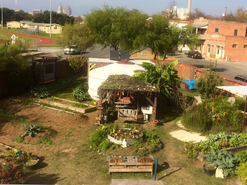 Renewable Republic's urban farm. Photo by Stephanie Patillo.