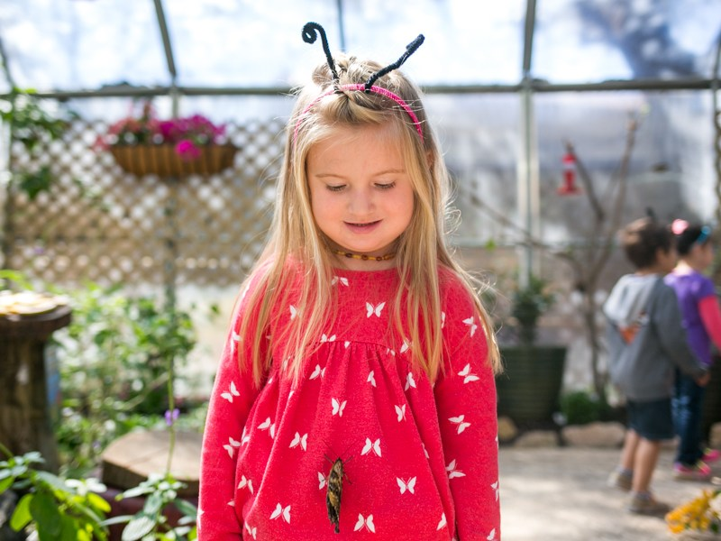 A San Antonio Zoo School child wore her butterfly shirt especially for today. Photo by Kathryn Boyd-Batstone