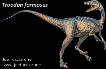 An artist's rendering of a close relative of Geminiraptor suarezarum. Image courtesy of Marina Suarez.