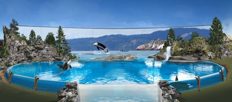 SeaWorld announced that it is phasing out current killer whale theatrical shows and replacing with new, inspiring, natural orca encounters as part of its ongoing commitment to education, marine science research, and rescue of marine animals. These programs will focus on orca enrichment, exercise, and overall health and will start in its San Diego park next year, followed by San Antonio and then Orlando in 2019. Rendering courtesy of SeaWorld.