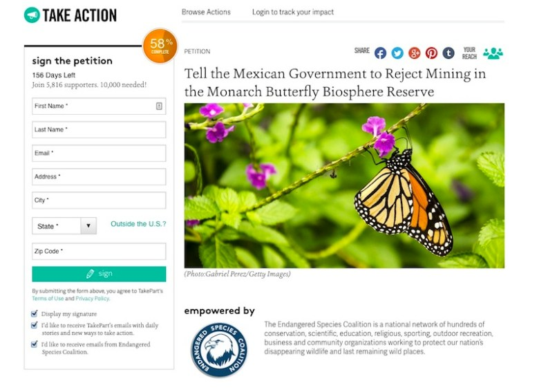Click here to take the pledge. https://takeaction.takepart.com/actions/tell-the-mexican-government-to-reject-mining-in-the-monarch-butterfly-biosphere-reserve