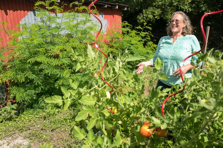 Urban Farm Stand Manager Karen Haynes shows off her garden which is located directly behind her business. Photo by Scott Ball.