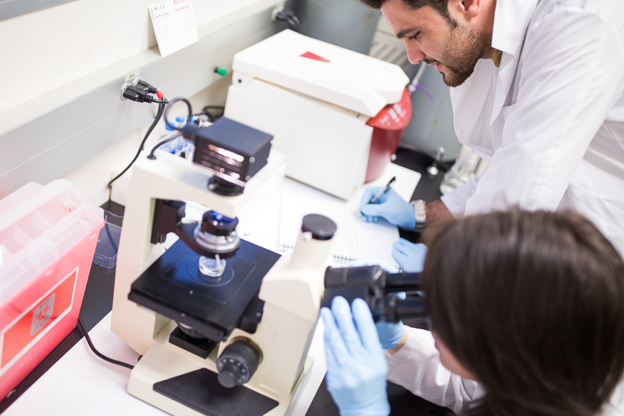 Researchers record microscope findings. Photo by Scott Ball.