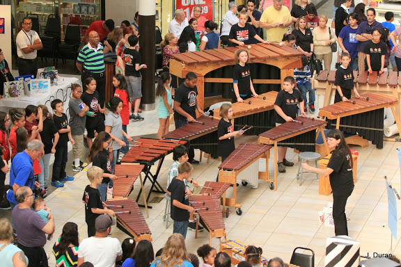 Bonnie Anderson instructs a marimba class at the school where she teaches. Photo by Javier Duran.