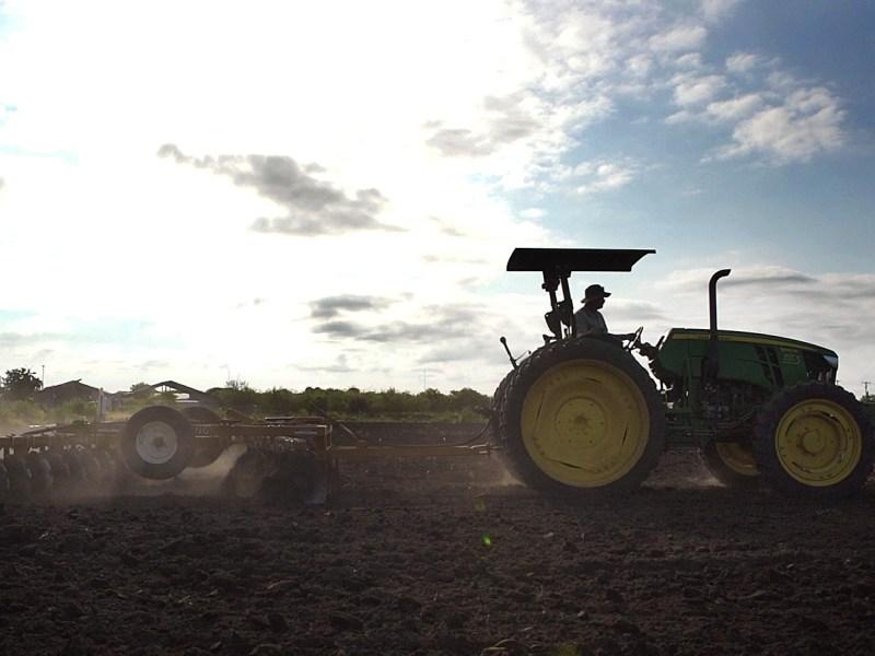 San Antonio Food Bank Community Farm Manager Mike Persyn runs a plow through the 25-acre farm. Photo by Kathryn Boyd-Batstone.