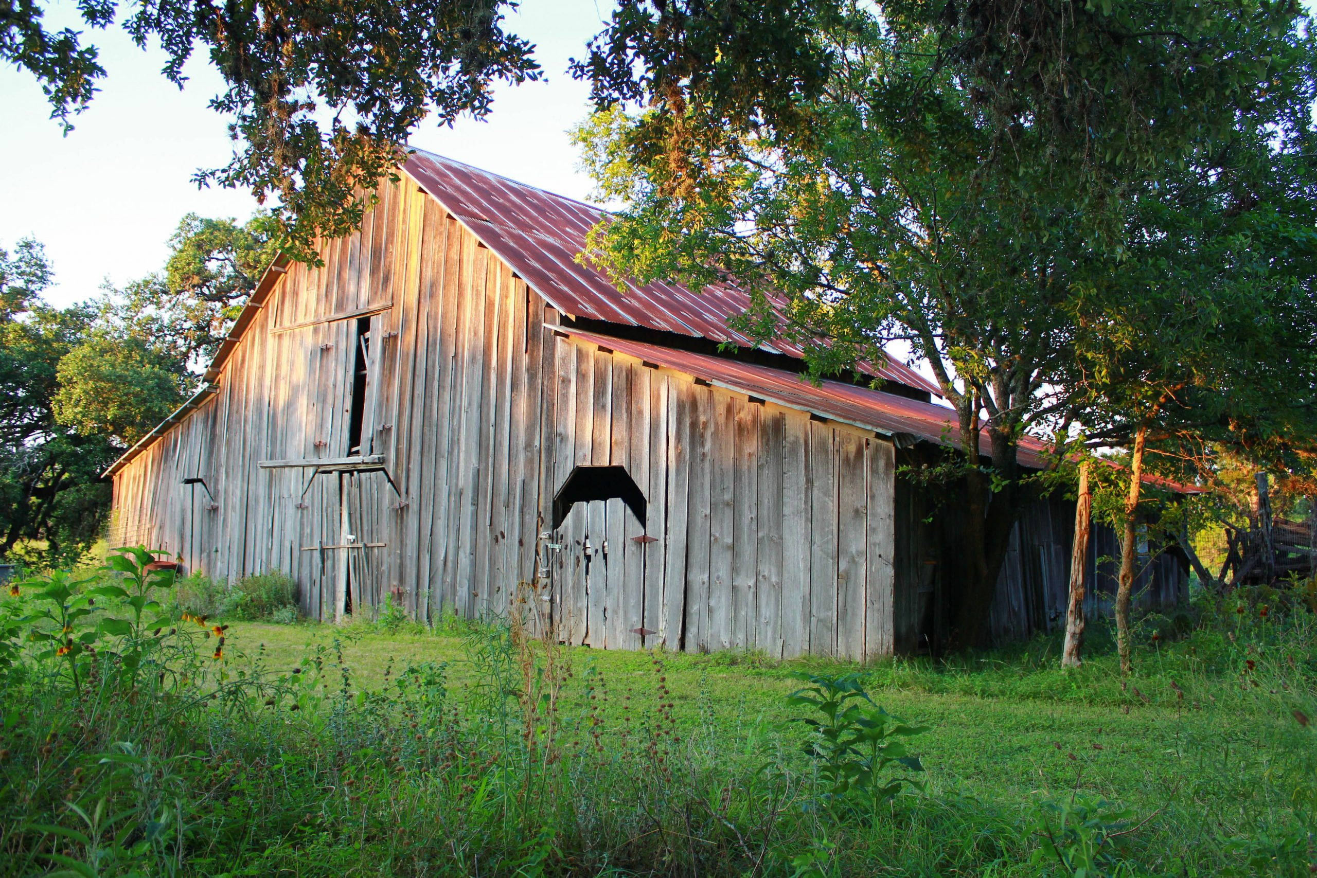 A barn on the grounds of Cibolo Nature Center. Courtesy of Cibolo Nature Center & Farm.