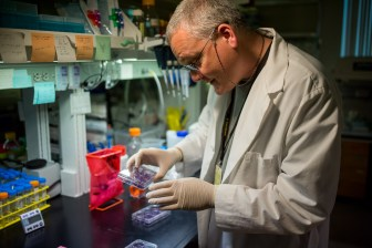 Dr. Andrew Hayhurst is a scientist in the virology and immunology department at Texas BioMed.