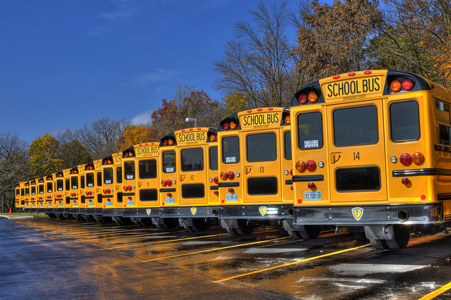School buses in the fall.