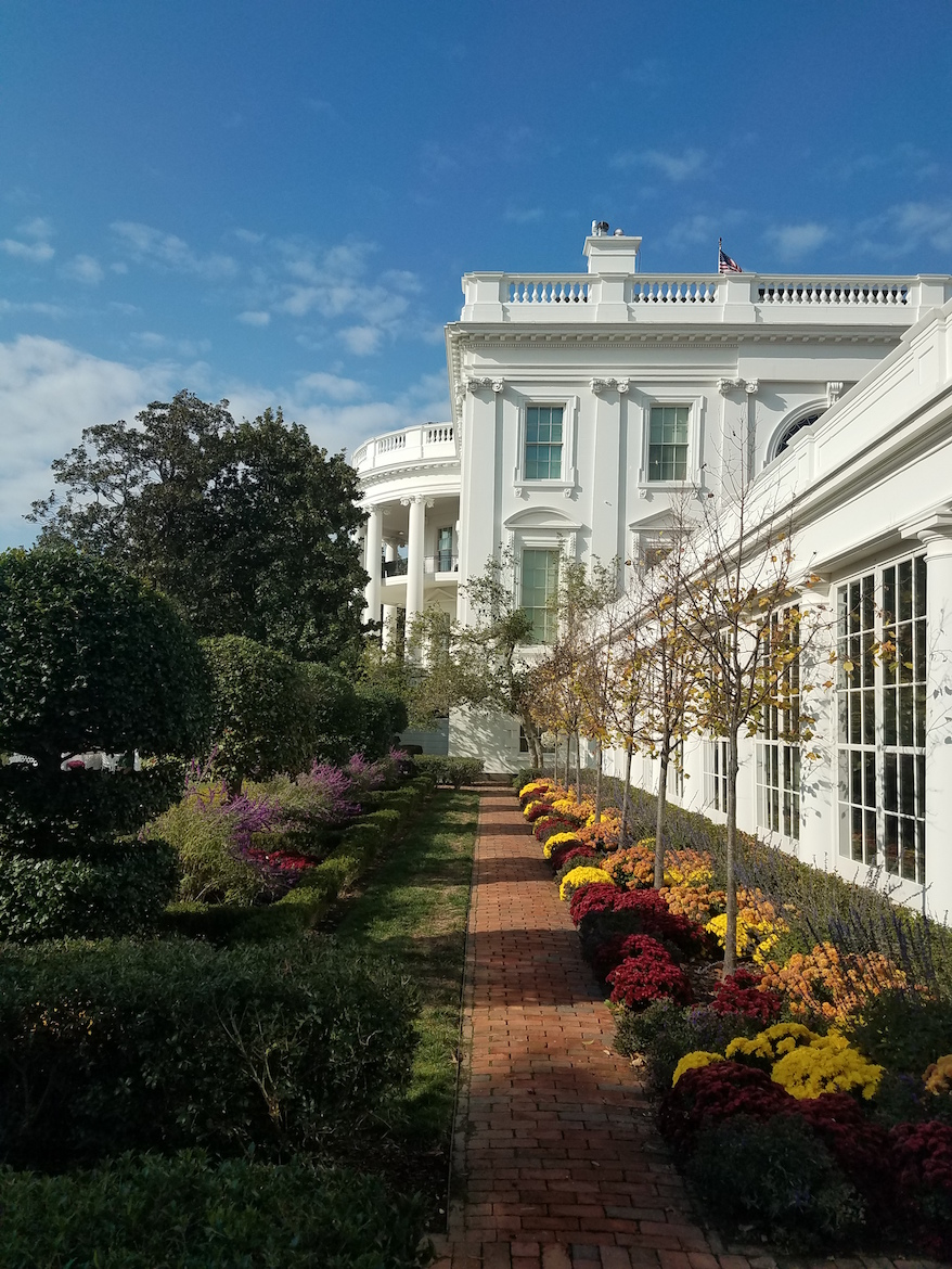 The White House and Gardens.