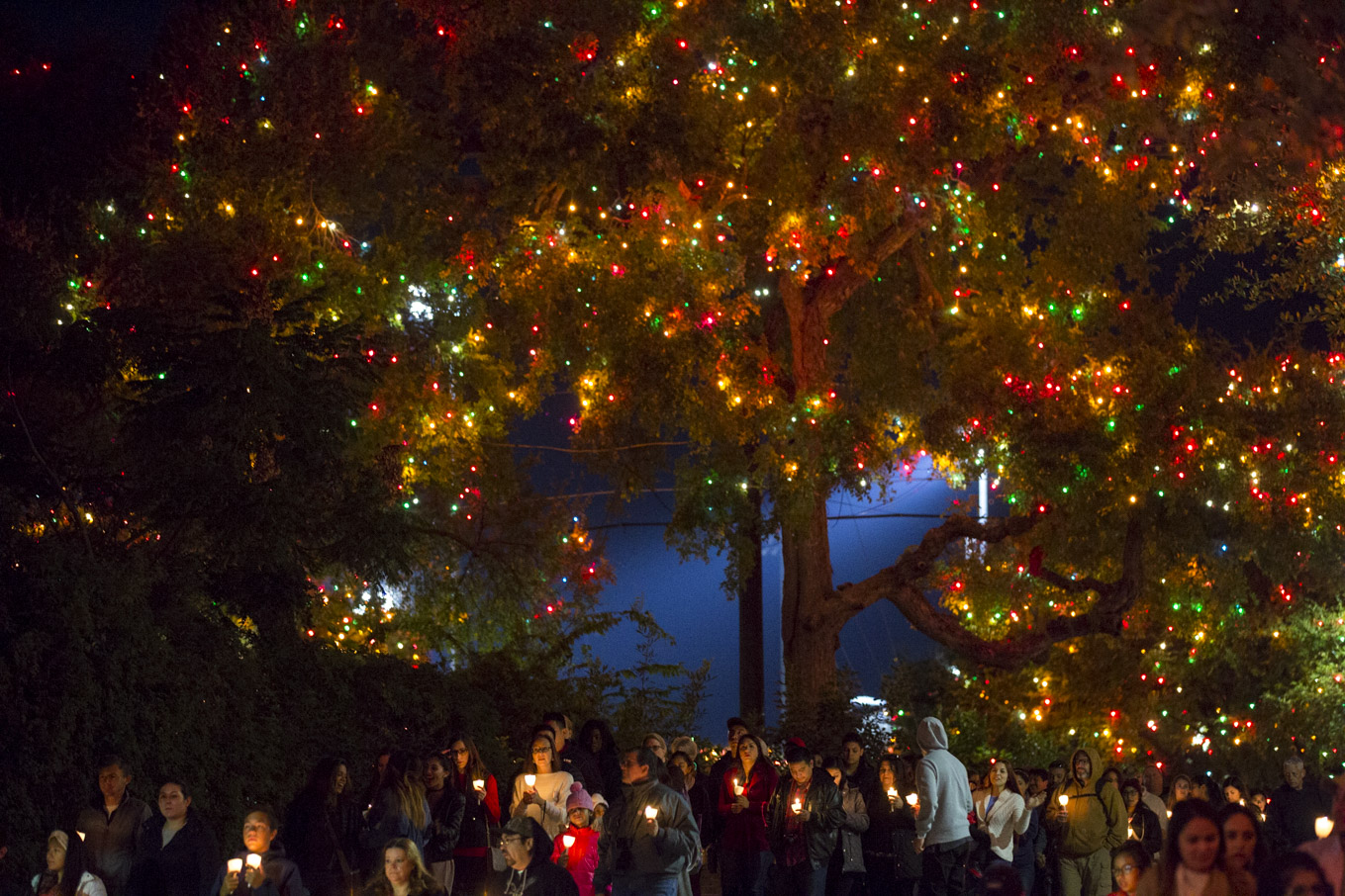 Hundreds of people walk along the procession through UIW for Light the Way.