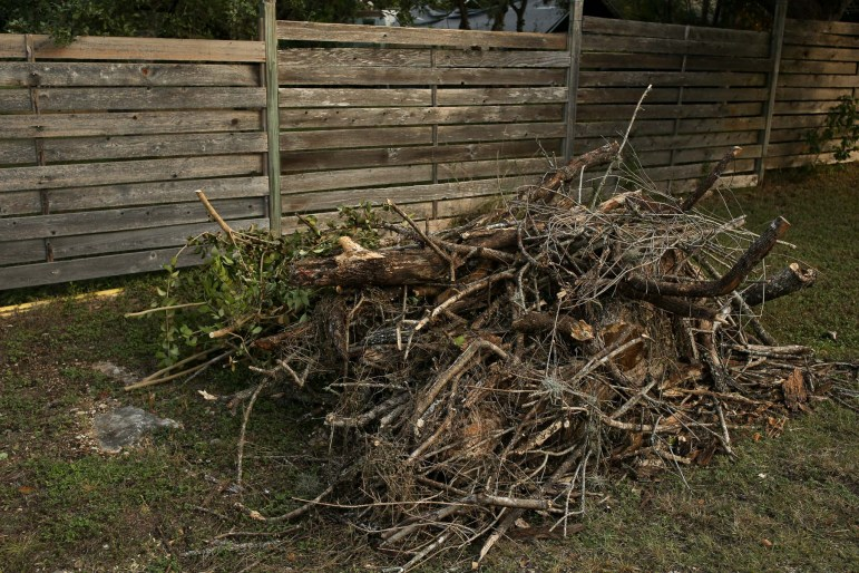 A large brush pile filled with dead oak is ready for pickup at the Hollywood Park neighborhood.