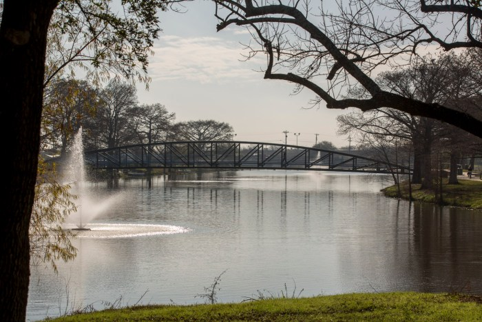 Newly added bridges improve accessibility within the park and enhance neighborhood connectivity.