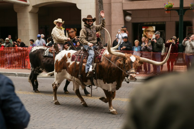 A parade participants waves to the crowd while riding a Texas longhorn.