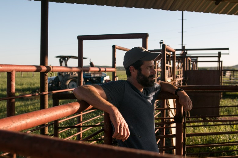 El Capote Ranch owner and Agex Inc. Chief Executive Officer Wendel Thuss watches the cattle on his ranch.