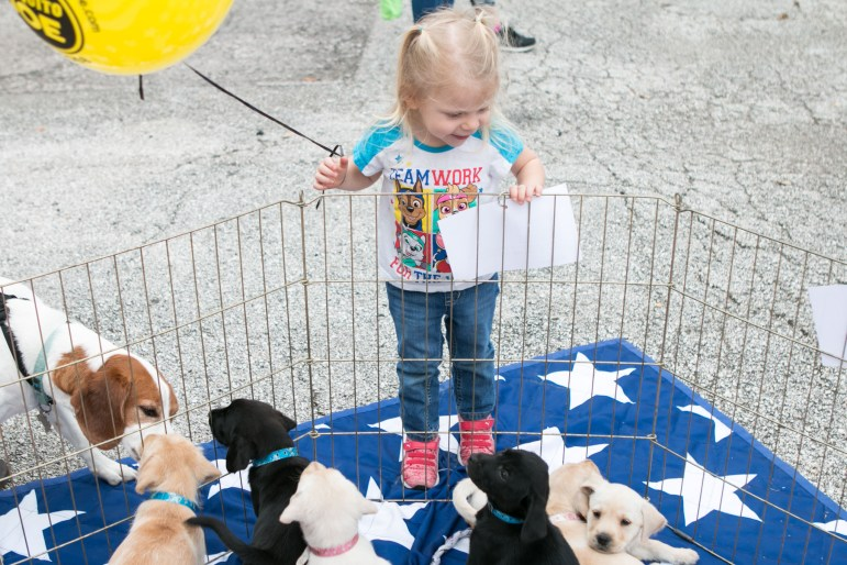 Ellie, 2, admires the puppies for adoption at the 5th Annual Bark in the Park – Perrito Grito in Rosedale Park.