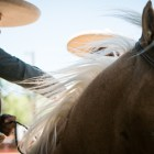 A charro rides his horse through the arena for A Day in Old Mexico & Charreada.