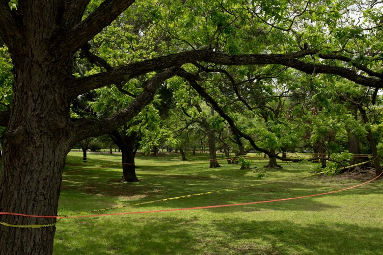 Large sections of Brackenridge Park are sectioned off by yellow and orange caution tape claiming camping areas.