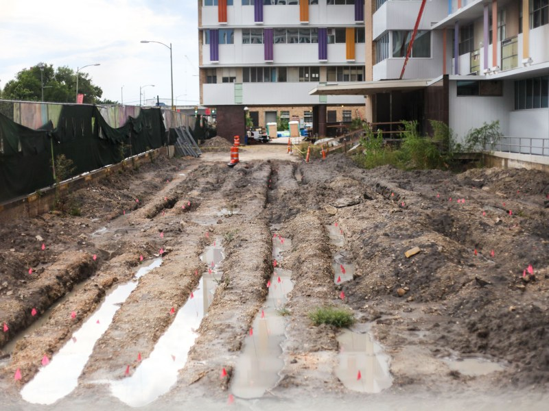 Remains were found by construction workers at the Children's Hospital.