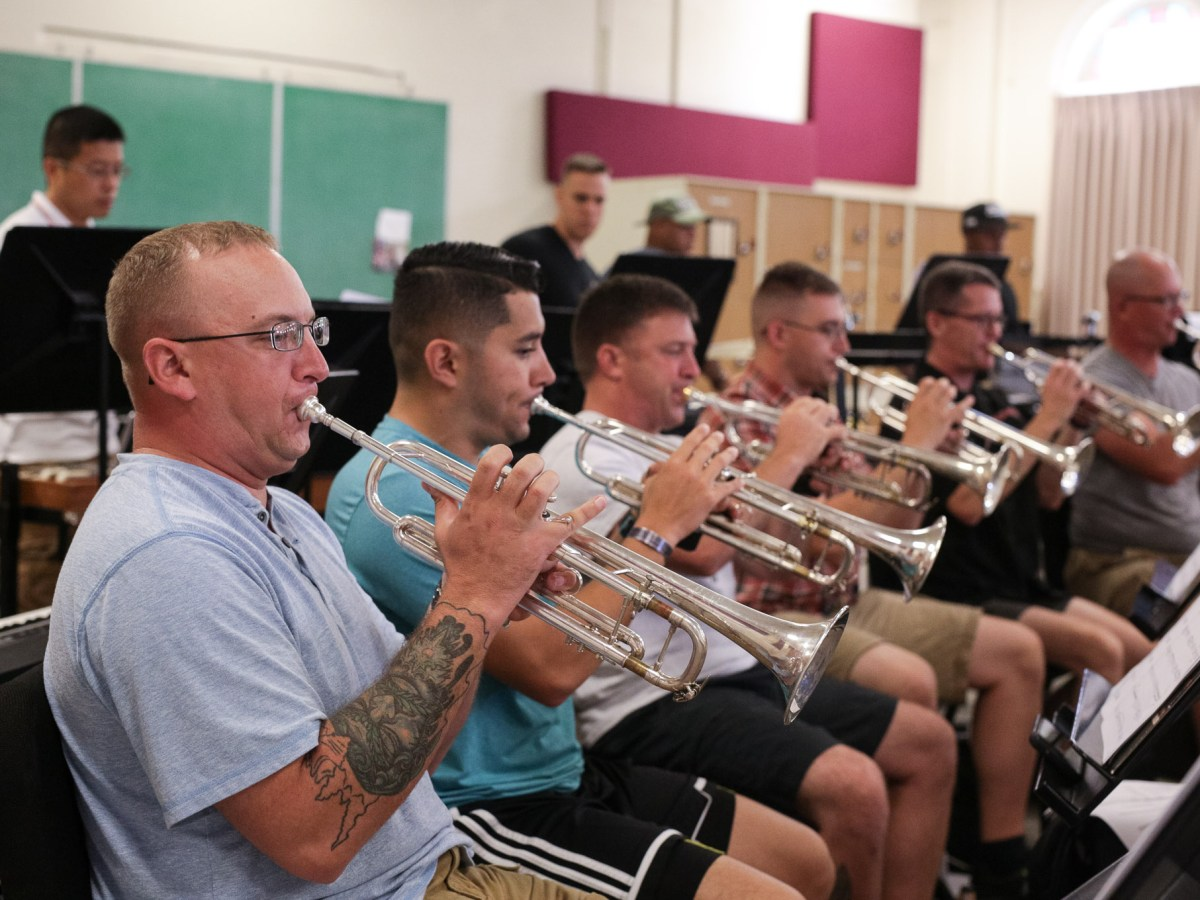 The horn section of the Army 323D Band.
