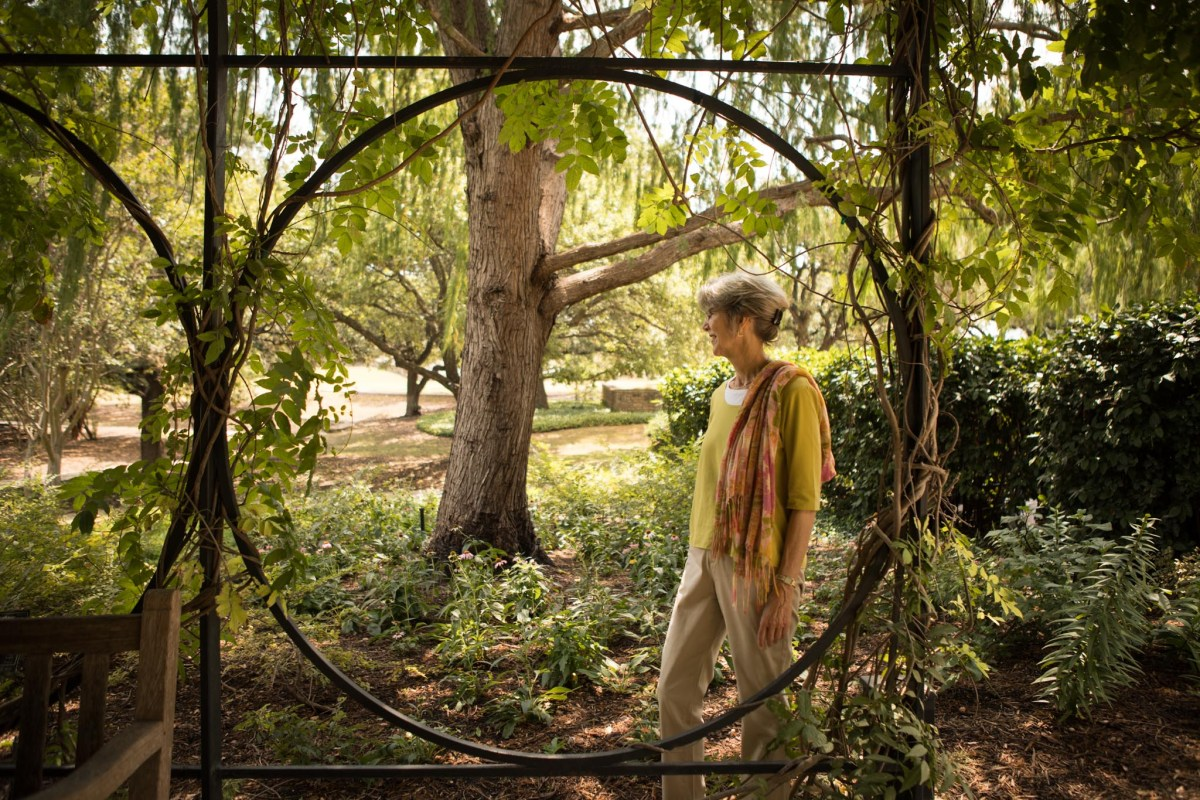 San Antonio Botanical Garden Society, Inc. Former Director of Community Relations and Visitor Services Candace Andrews admires the Wisteria Arbor in the San Antonio Botanical Garden.