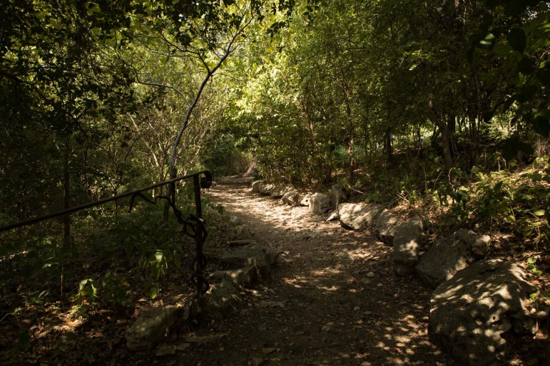 A path in Cathedral Park is covered in shade behind Cathedral House.