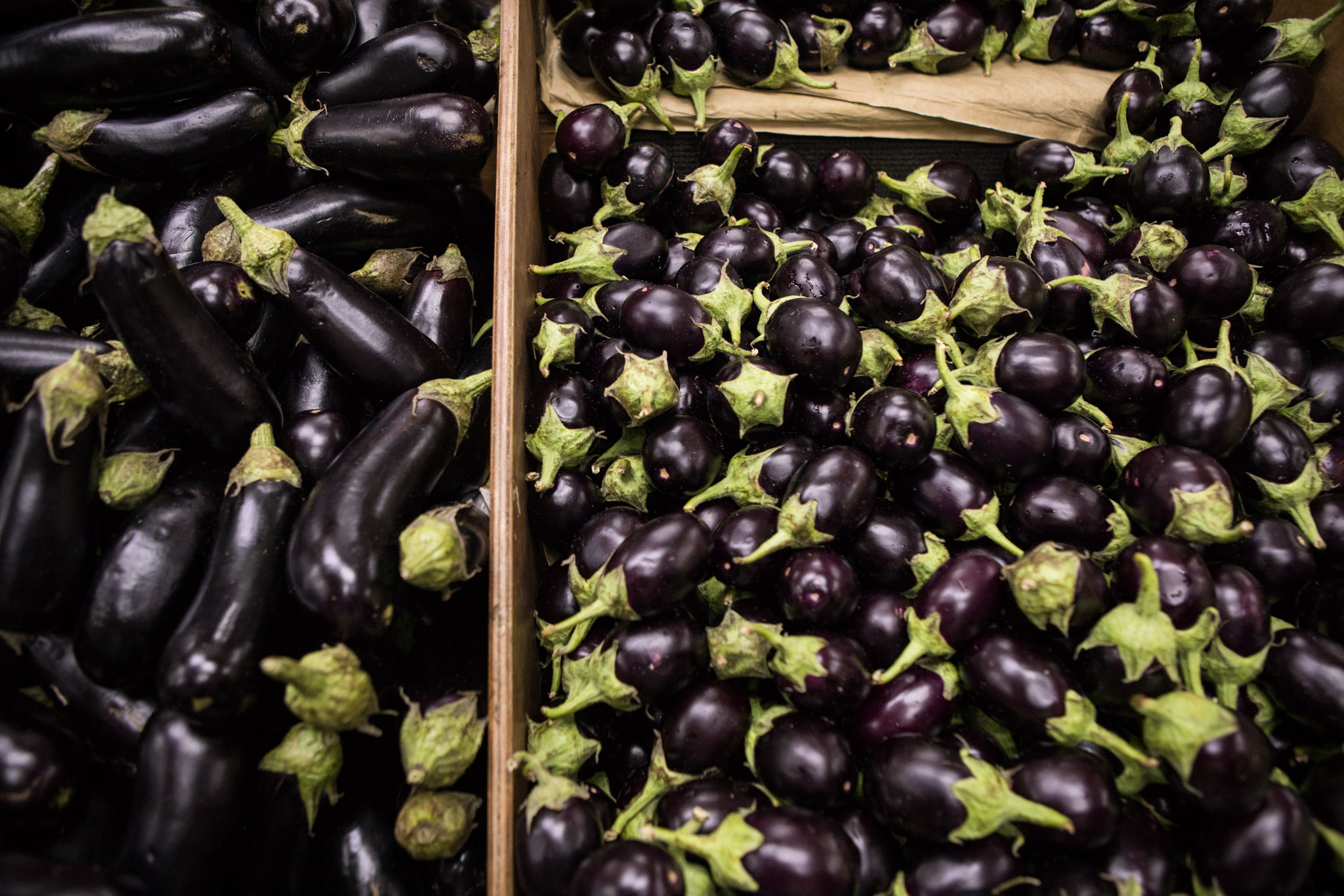Ali Baba International Food Market offers many different varieties of eggplant, including (from left) Italian eggplant and Indian eggplant.