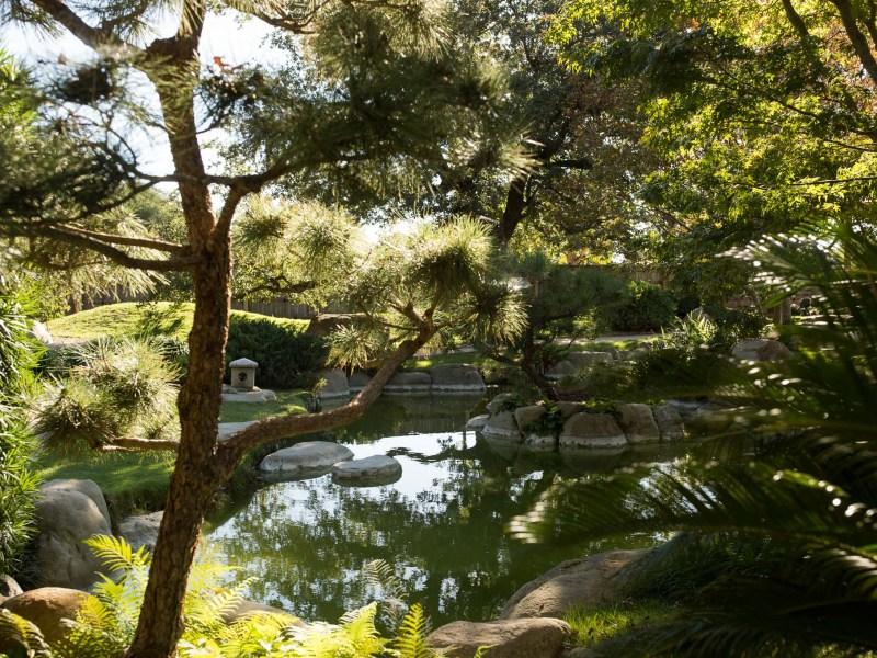 The Kumamoto En Japanese Garden.