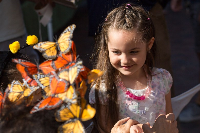 Yulina Alcaraz, 5, speaks with Veronica Prida after tagging and releasing a monarch butterfly.