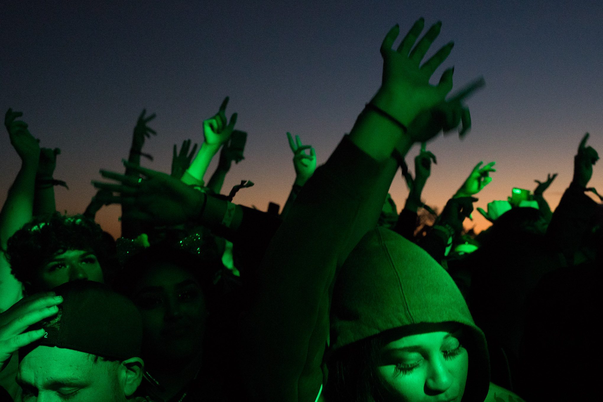 Attendees wave their hands in the air during a performance by Carnage.