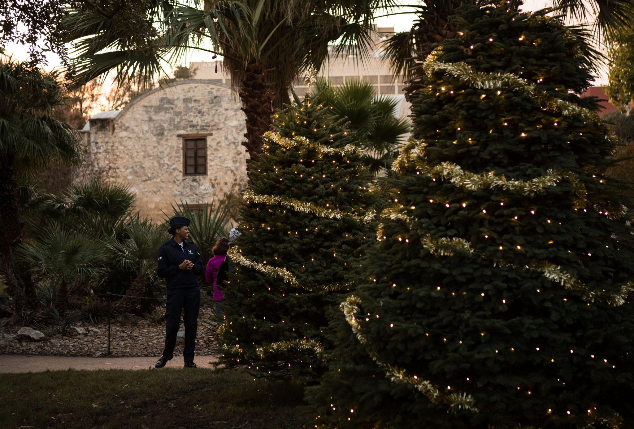 Lights adorn Christmas trees at the Alamo.